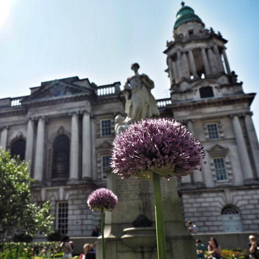Belfast City Hall in Spring