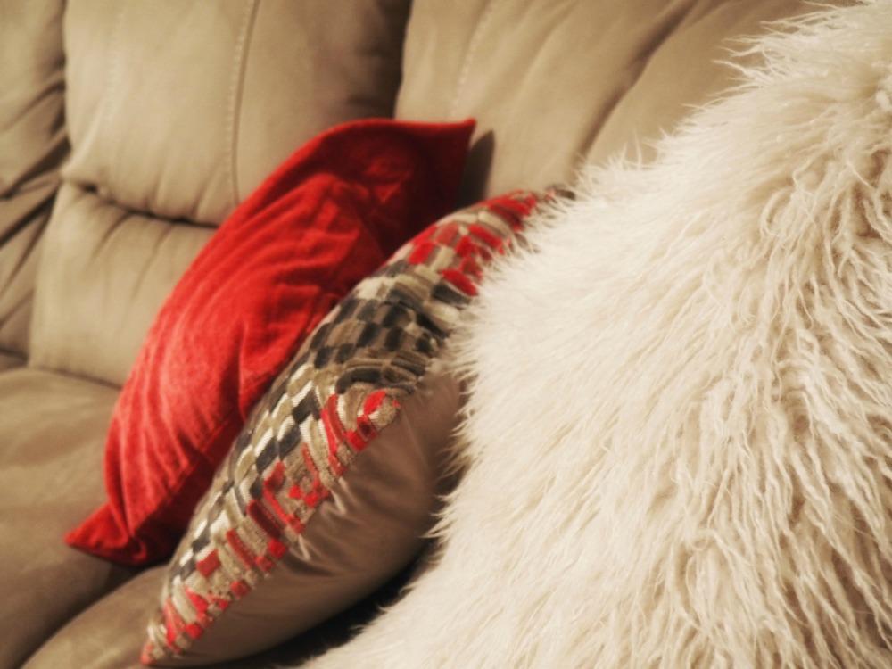 Sofa cushions .jpg